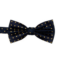 Spot Silk Bow Tie