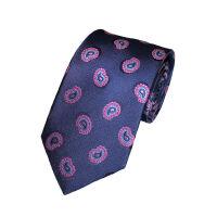 Silkneat Paisley Tie