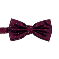 Mini Paisley Silk Bow Tie