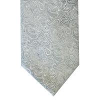 Wedding Paisley Tie
