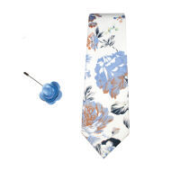 Tie With Lapel Pin Set