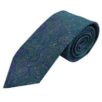 Paisley Polyester Ties